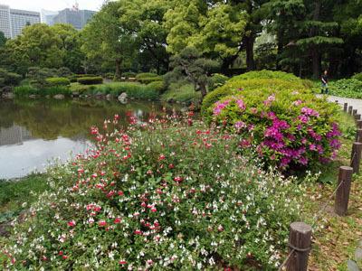 日比谷公園 - コピー.jpg