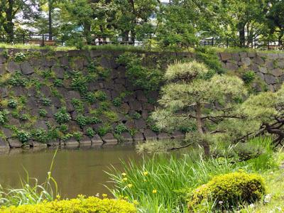 日比谷公園2 - コピー.jpg
