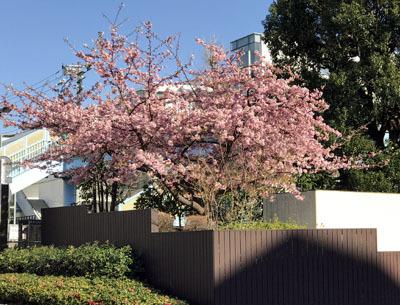 椿山荘入口.jpg