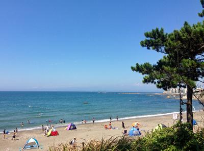 葉山海.jpg